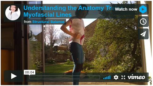 Understanding Anatomy Trains